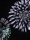 東京湾大華火祭の画像